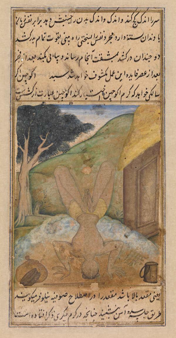 Posizione capovolta tratta dal Bahr-al-Hayt (Oceano di vita) testo in persiano redatto alla fine del XVI secolo e illustrato all'inizio del secolo successivo. http://www.asia.si.edu/explore/yoga/chapter-4-bahr-al-hayat.asp#one