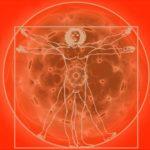 L'uomo sonoro – Presenza Armonica
