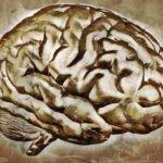 Lo Zen e le Neuroscienze: il Sé e l'Altro